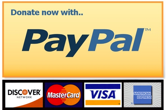Paypal hd big